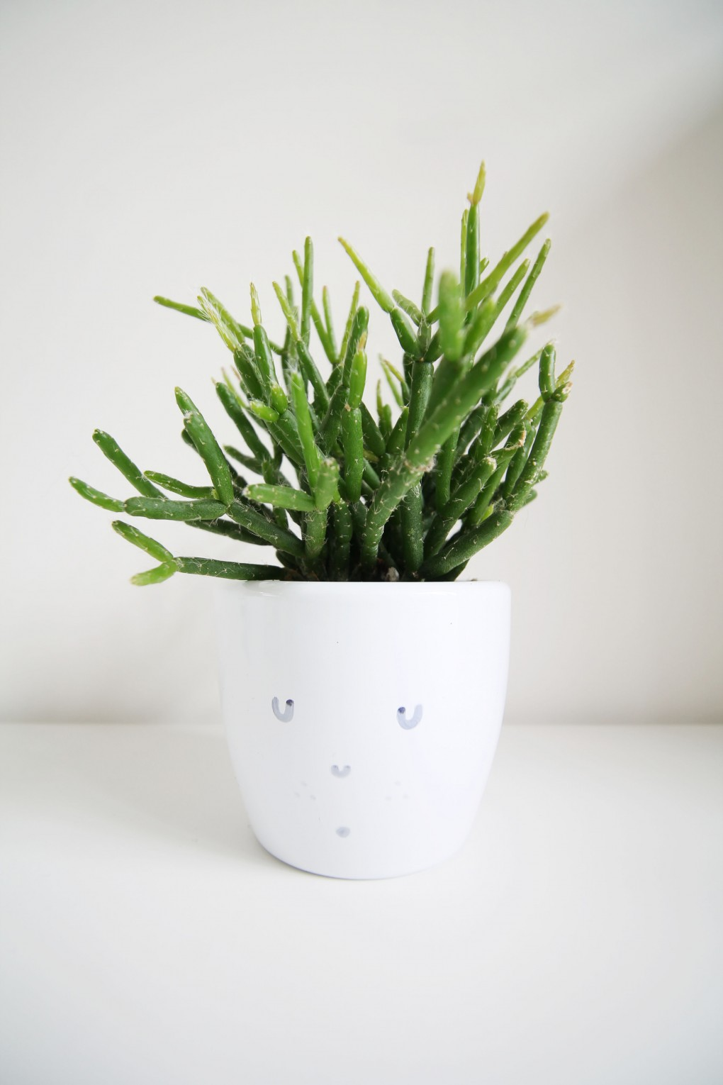 DIY: succulent pot